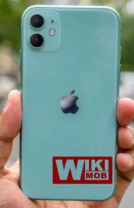 سعر ومواصفات iPhone 11