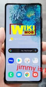 Samsung Galaxy S20 FE 5G سعر ومواصفات