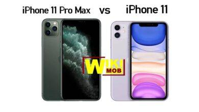 صورة مقارنة بين ايفون 11 وايفون 11 برو ماكس