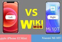 صورة مقارنة بين شاومي مي 10 تي و ايفون 12 ميني