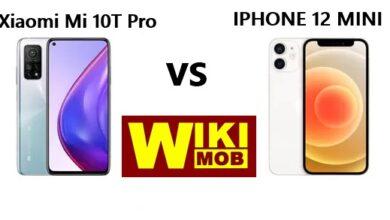 صورة مقارنة بين شاومي مي 10 تي برو وايفون 12 ميني