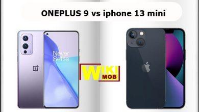 صورة مقارنة بين ون بلس 9 و ايفون 13 ميني