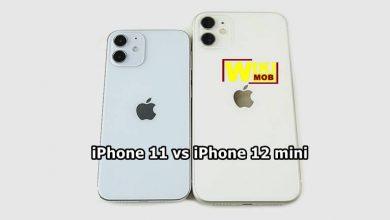 صورة مقارنة بين ايفون 11 وايفون 12 ميني
