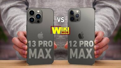 صورة مقارنة بين ايفون 12 برو ماكس و ايفون 13 برو ماكس